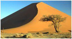 namibia_desierto07