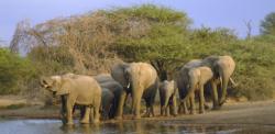 Explorando Sudafrica